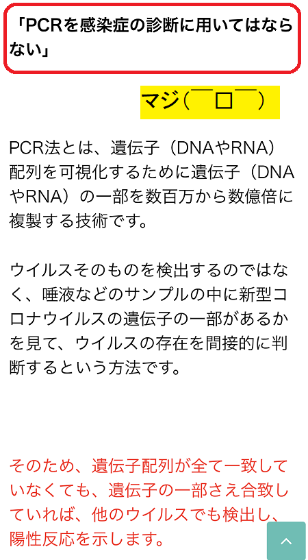 PCR2.PNG