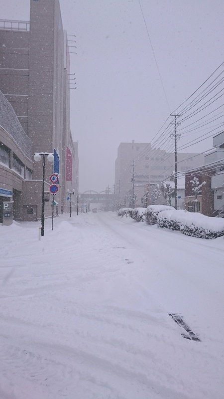 dokayuki.JPG